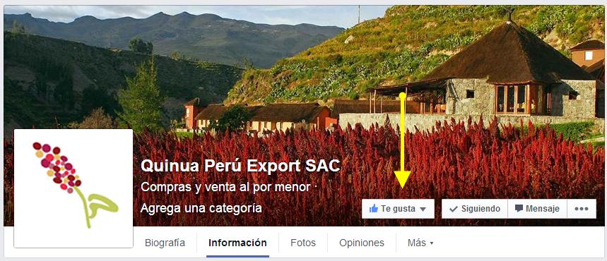 quinua-peru-export-sac